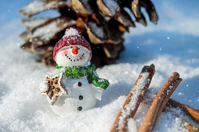 ポールアンドジョークリスマスコフレ中身・口コミ 店頭販売と予約情報