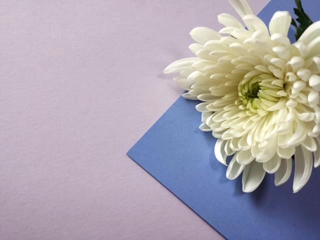喪中はがきをネット印刷するなら『挨拶状ドットコム』!宛名印刷が無料でお得!