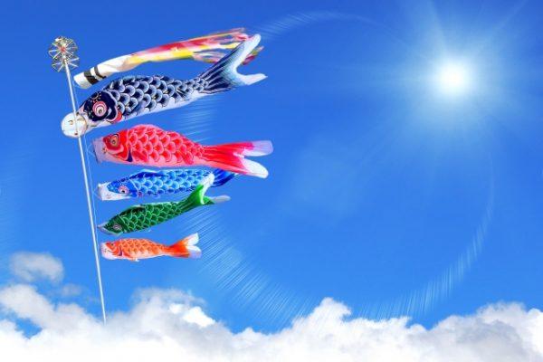 鯉のぼりは何歳まで飾るの?昔の風習から一般家庭ではどうなのか徹底比較!