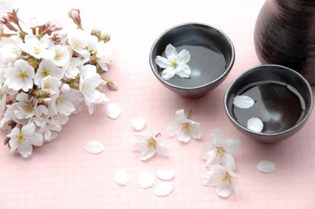 お花見の幹事必見!お花見の場所取りを確実に取る方法や選び方、必要なものを伝授!