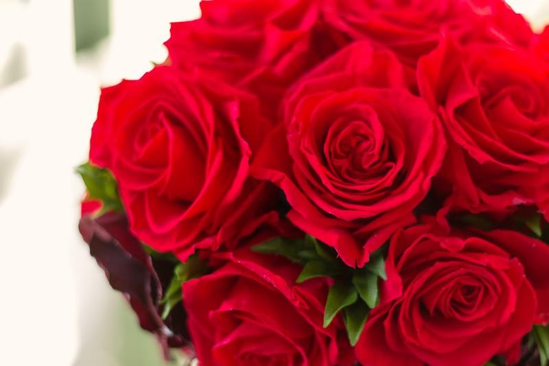 母の日のカーネーションの選び方や花の色について喜ばれる贈り方は?