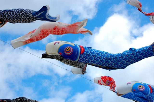 鯉のぼり ベランダ 飾り方