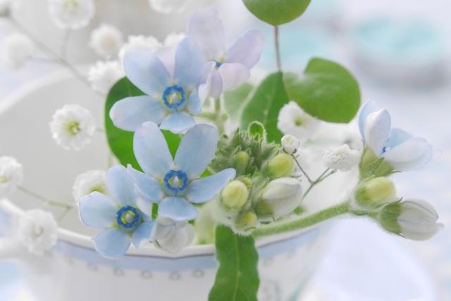 父の日のプレゼント花以外で喜ばれるおすすめギフトや定番を紹介!