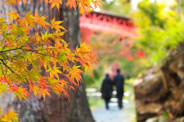 紅葉狩りデートの服装でおすすめコーデと映える色やNG格好を紹介!