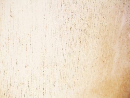 カビ対策決定版!壁、床など室内のカビを根こそぎ退治しよう!